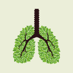 Blog-10-lungs